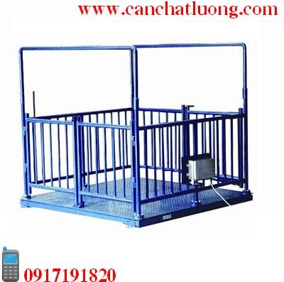Cân động vật, Can dong vat, 19d240b2166ede015329a83124df1910.jpg