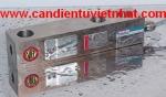 can dien tu, cân điện tử - Tedea huntleigh 3420